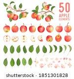 watercolor elements of apple...   Shutterstock .eps vector #1851301828