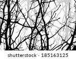 tree branches . vector   Shutterstock .eps vector #185163125