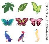 tropical leaves  birds and... | Shutterstock .eps vector #1851809188