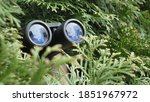 Person Hidden In Bush Peeping...