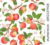 boho botanical apple seamless... | Shutterstock .eps vector #1852137418