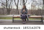 The Girl Sits On A Bench In A...