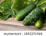 Fresh Cucumbers With Green...