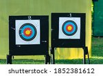 Archery Targets Hit By Arrows.