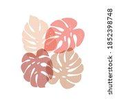 monstera leaf flat vector... | Shutterstock .eps vector #1852398748