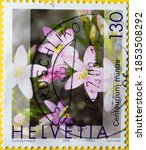 Small photo of Switzerland - Circa 2003 : a postage stamp printed in the swiss showing some flowers of the centaury medicinal plant. Text: Centaury (Centaurium minus)