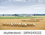 Hay Crop Bales Rolled In Field...