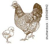 vector illustration of... | Shutterstock .eps vector #185438942