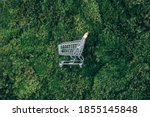 Small photo of Shopping cart on green grass, moss background. Top view. Minimalism style. Creative design. Shop trolley. Sale, discount, shopaholism, ecology concept. Sustainable lifestyle, conscious consumption.