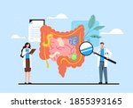 intestines diagnosis research...   Shutterstock .eps vector #1855393165
