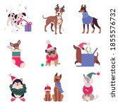 cute cheerful dogs with... | Shutterstock .eps vector #1855576732