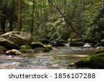 West Prong Of Little River...