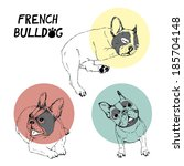 french bulldogs illustrated on... | Shutterstock .eps vector #185704148