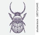 Horn Beetle Vector Illustration ...