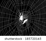 illustration with spider web... | Shutterstock .eps vector #185720165