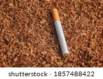 Cigarette Lies On Tobacco...