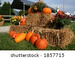 With Flowers  Pumpkins And Straw