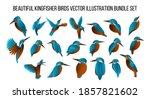 beautiful kingfisher birds...   Shutterstock .eps vector #1857821602