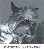 Illustration Of A Dog Sitting...