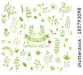 set of vector watercolor nature ... | Shutterstock .eps vector #185793098