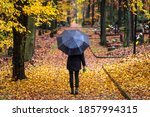 Woman In Black With Umbrella...