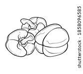 peppers. vector illustration of ...   Shutterstock .eps vector #1858096585