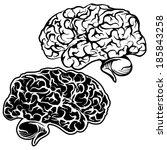 human brain sketch cartoon... | Shutterstock .eps vector #185843258