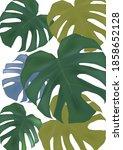 tropical leaves of monstera in... | Shutterstock .eps vector #1858652128