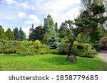 The Kubota Garden In Seattle...