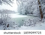 Forest Lake In Snowfall. Winter ...