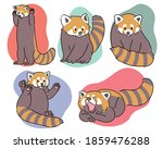 Cute Red Panda In Various Poses ...