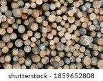Wall Of Stacked Wood Logs For...
