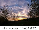 Silhouette Of Branch Of Tree At ...
