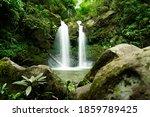 Jungle Double Waterfall Cascade ...