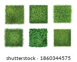 ground cover plants background... | Shutterstock .eps vector #1860344575