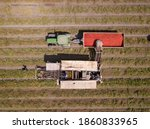 Agriculture Machinery. Tomato...
