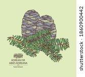 background with korean fir ... | Shutterstock .eps vector #1860900442