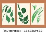 set of botanical art vectors ... | Shutterstock .eps vector #1862369632