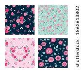 set of seamless pretty patterns ... | Shutterstock .eps vector #1862613802