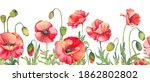 Seamless Border With Red Poppy...