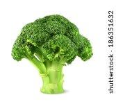 fresh green broccoli  vector...   Shutterstock .eps vector #186351632
