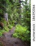 Hiking The Heliotrope Ridge...