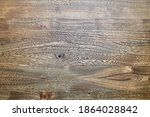 Wood Texture. Elm Wood Texture. ...