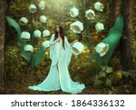 Beautiful Fantasy Woman...