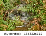 The stormy flow of water in the mountainous terrain runs on the stones that are covered with moss. - stock photo