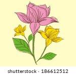 illustration flower sketch