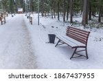 The Bench Stands In The Park In ...
