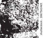 Grunge Texture Of Tree Bark....
