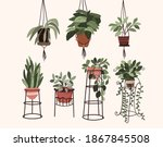 Interior Potted Plants Decor...