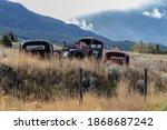Rustic Antique Trucks In A...